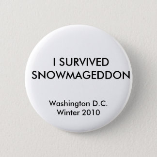 Badges J'AI SURVÉCU à SNOWMAGEDDON, Washington