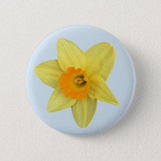 Badges Jonquille jaune de ressort sur bleu-clair