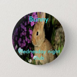 Badges Lapin