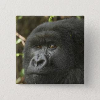 Badges Le Rwanda, parc national de volcans. Montagne 2