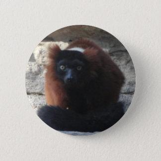 Badges Lémur rouge de Ruffed