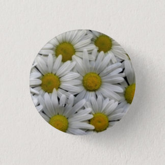 Badges Marguerites blanches