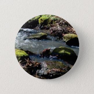 Badges mousse dans The Creek