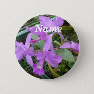 Badges Orchidée -- Fleur nationale du Costa Rica,
