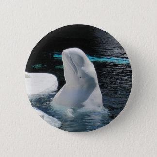 Badges Pin de baleine de beluga