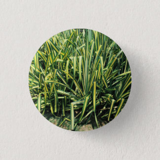 Badges Pin de vis de vert de bouton de plante