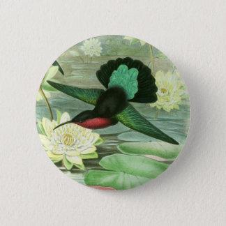 Badges Pin rond de bouton de colibri coloré de Gould