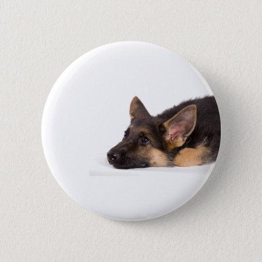 Badges puppy german sheperd