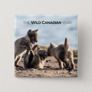 Badges Ressort - Fox arctique
