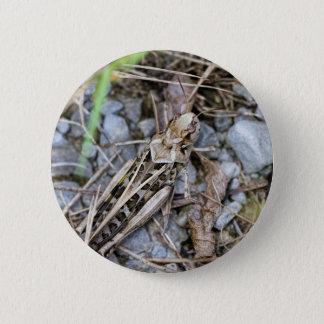 Badges Sauterelle camouflée
