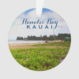 Baie de Hanalei, photo de Kauai Hawaï 2