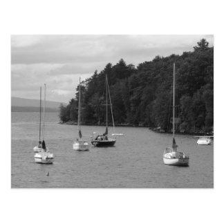 Baie de Kingsland Cartes Postales