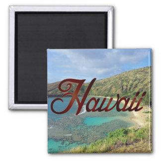 Baie Oahu Hawaï de Hanauma Aimant