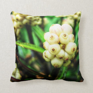 Baies tropicales 2 coussin