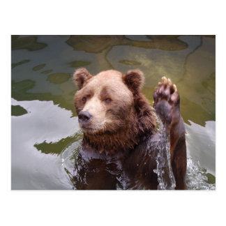 Baigner la carte postale d'ours de Brown