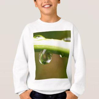 baisse de l'eau sur le feuille sweatshirt