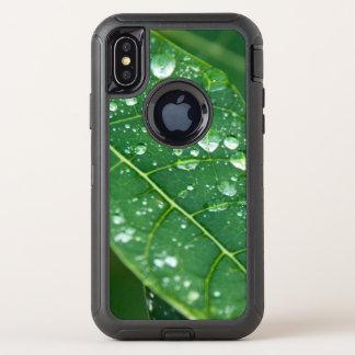 Baisses de pluie sur la feuille tropicale de