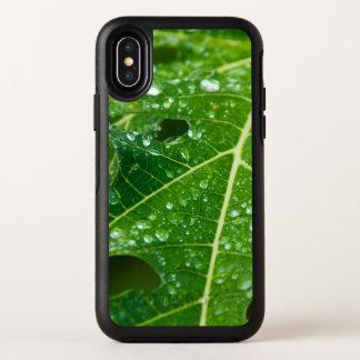 Baisses de pluie sur la feuille verte tropicale de