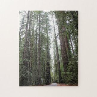 Balade par des séquoias puzzle