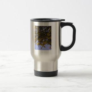 Balai jaune tasses à café