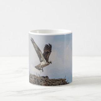 Balbuzard dans un nid mug