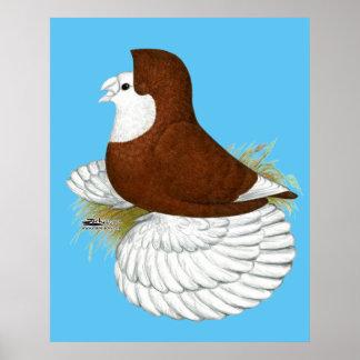 Baldhead de rouge de pigeon de trompettiste poster