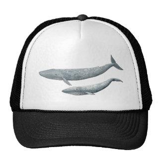 Baleine bleue casquettes de camionneur