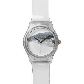 Baleine bossue Horloge Montres Bracelet
