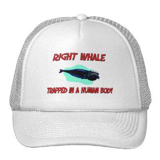 Baleine droite emprisonnée à un corps humain casquette de camionneur