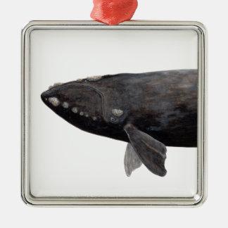 Baleine franche d'Atlantique Ornement Carré Argenté