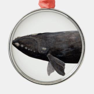 Baleine franche d'Atlantique Ornement Rond Argenté