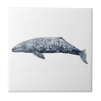 Baleine gris petit carreau carré