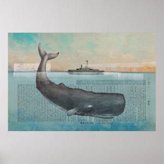 Baleine Poster