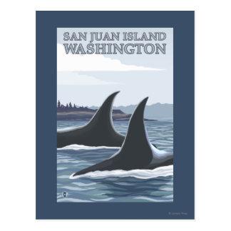 Baleines #1 - île de San Juan, Washington d'orque Cartes Postales