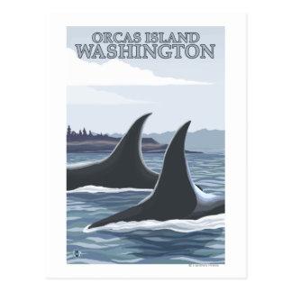 Baleines #1 - orques île, Washington d'orque Cartes Postales