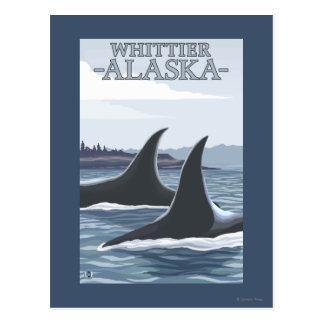 Baleines #1 - Whittier, Alaska d'orque Cartes Postales