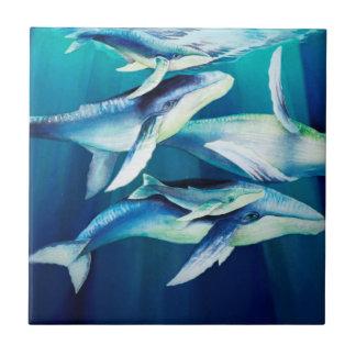 Baleines de bosse petit carreau carré