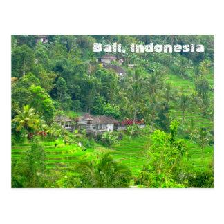 Bali, Indonésie Cartes Postales