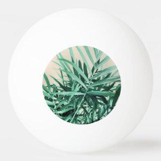 Balle De Ping Pong Paume tropicale