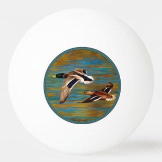 Balle Tennis De Table Canards de Mallard volant au-dessus de l'étang