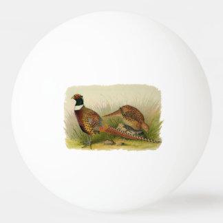 Balle Tennis De Table Une paire de faisans étranglés d'anneau dans un