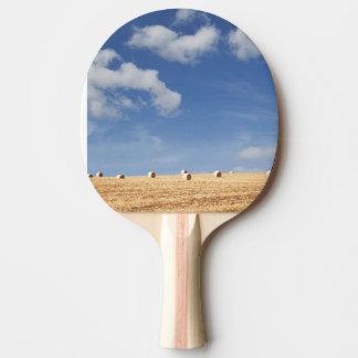 Balles de foin sur le champ raquette de ping pong