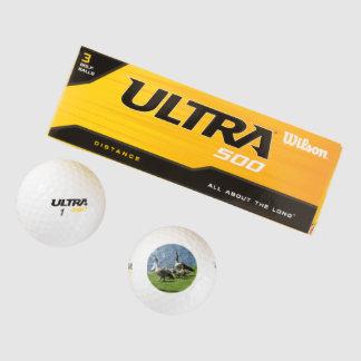 Balles De Golf Oies du Canada sur l'herbe par la boule de golf de