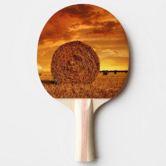 Balles de paille sur des terres cultivables avec raquette tennis de table