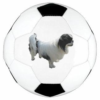 Ballon De Foot menton japonais complètement