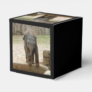 Ballotins Elephant_20171101_by_JAMFoto