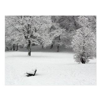 Banc et arbres de neige carte postale