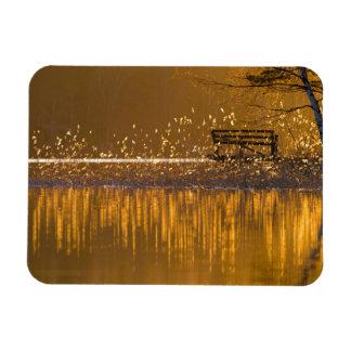 Banc isolé par le lac dans la lumière d'or magnet flexible