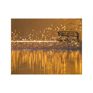 Banc isolé par le lac dans la lumière d'or toile