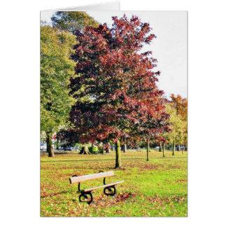 Banc sous l'arbre en parc en automne carte de vœux